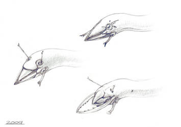 Birrin Head Sketches by Abiogenisis