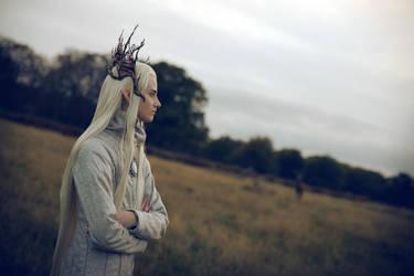 The Hobbit - Dawn by ca-g-e