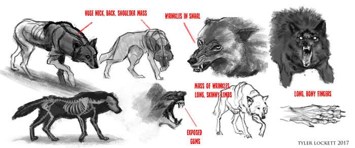 Wolf Sketches by tylerlockett