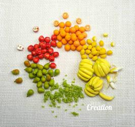 Miniature Fruit Circle by PetiteCreation