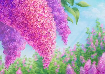 Lilac by Atrika