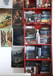 Organized Bookshelf by adrianaTheGirlOnFire