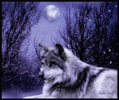 Wolf by ShadowSecrets