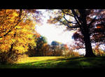 To tread the Grass where Trees grow Gold by Canthgyl
