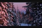 Winter Sunset by infinityloop
