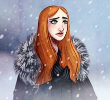 Winter is here by Mokodoko