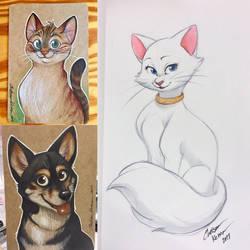 Wondercon 2017 Sketches by autogatos