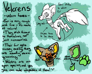 Velcrens - Open Species by ThisAccountIsDead462