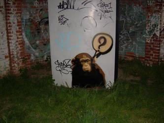 Monkey by srcrew
