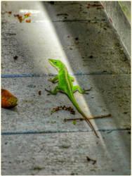 Green Lizard by Leannnorrisbond