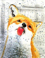 Thirsty Fox by GhyselenBert