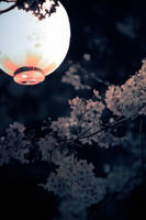 falling parachutes by jyoujo