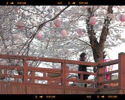 kyoto streets scenes by jyoujo