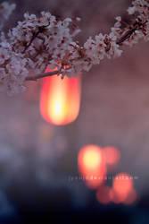Spiritual guides by jyoujo