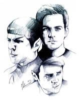 Star Trek - Kirk,Spock + Bones by kleinmeli
