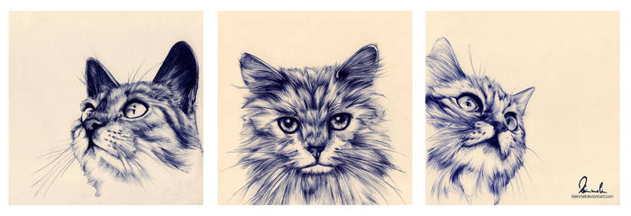 Ballpoint Pen Cat-Trio by kleinmeli