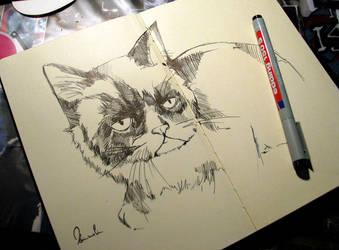Grumpy Cat by kleinmeli
