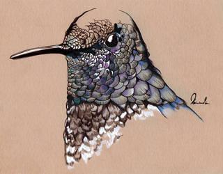Inky Hummingbird by kleinmeli