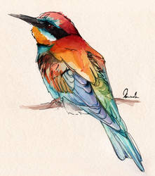 Colorful Bird by kleinmeli