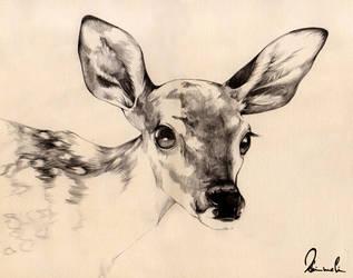 Dear Deer by kleinmeli