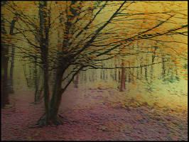 Autumn_invitation by Theressa