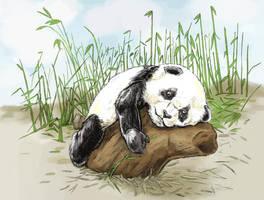 Panda needs a hug by tomographiser