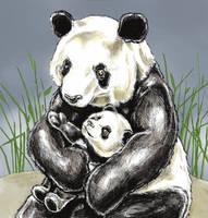 Panda gets a hug by tomographiser