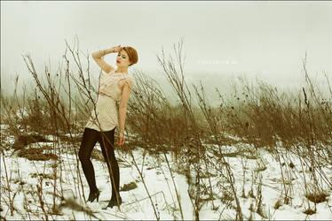 Winter fog II by WildRainOfIceAndFire