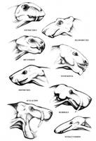 therapsids reconstructions by mojcaj