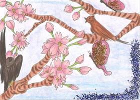 KaKAO Karte 53 Spring by Sil-Coke