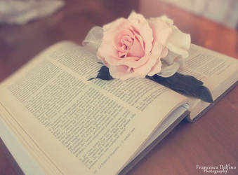 Book and rose by FrancescaDelfino