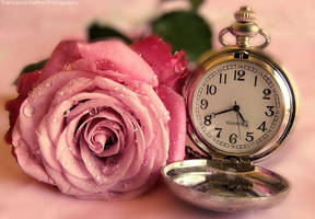 It's time for... by FrancescaDelfino