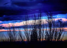 Blue by FrancescaDelfino