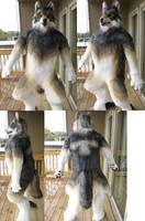 Bleis wolf Body Finished by Monoyasha