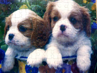 Puzzle doggies by RODOTHEA