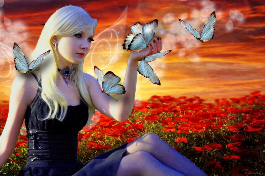 Butterfy Summer by tinca2