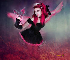 Dragon Angel by tinca2