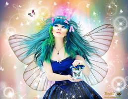 Beauty Of Butterfly by tinca2