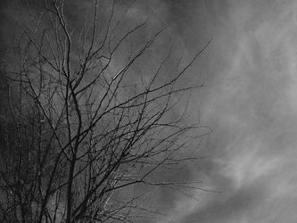 Bleak by Wufpacker