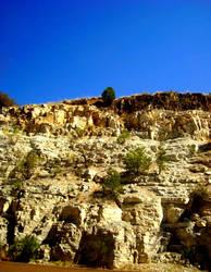 Arizona by WindsweptMagnolias