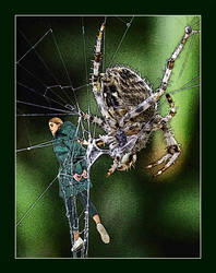 Don't afraid, Mr. Spider... by znak-1