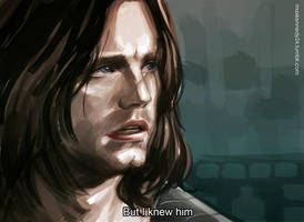 Captain America: The Winter Soldier - I knew him by maXKennedy