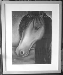 Horse by DDaniela