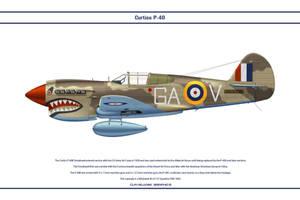 P-40E 112 Sqn RAF 1 by WS-Clave