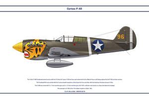 P-40E USA 11th FS 1 by WS-Clave
