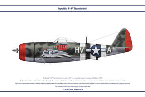 P-47 USAAF 61st FS 1 by WS-Clave