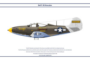 P-39Q USAAC 71TRS 1 by WS-Clave