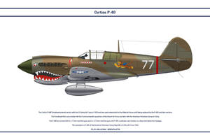 P-40E Flying Tigers by WS-Clave