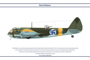 Blenheim Finland 1 by WS-Clave