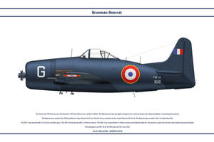 Bearcat France 3 by WS-Clave